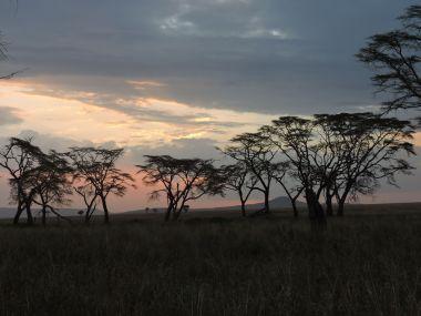ケニアの夕暮れ