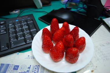 この苺は生まれて食べた中で一番おいしい苺だよ